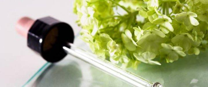 La teràpia floral del Dr. Bach