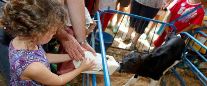 Visita una granja amb la família